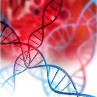 Impact of Genetic Variations on Schizophrenia Treatment