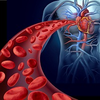 As-Needed Novel Oral Anticoagulant Therapy Safely and