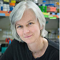 Julie Overbaugh, PhD, Fred Hutchinson Cancer Research Center