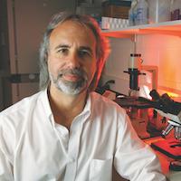 Norbert Kaminski, PhD