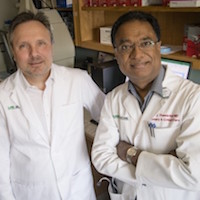 Jaroslaw Zmijewski, PhD; Victor Thannickal, MD