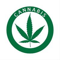 Cannabis Docs Need Immunity, AMA Says