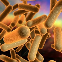 Clostridium difficile, C. difficile, liver disease