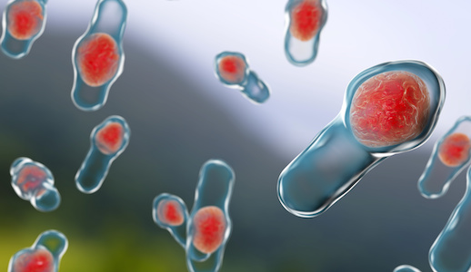 Researchers Track Evolution of FMT to Treat C  difficile | MD Magazine