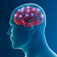 Cognition And Behavior White Matter >> Aphasia Post Stroke Linked To White Matter Md Magazine